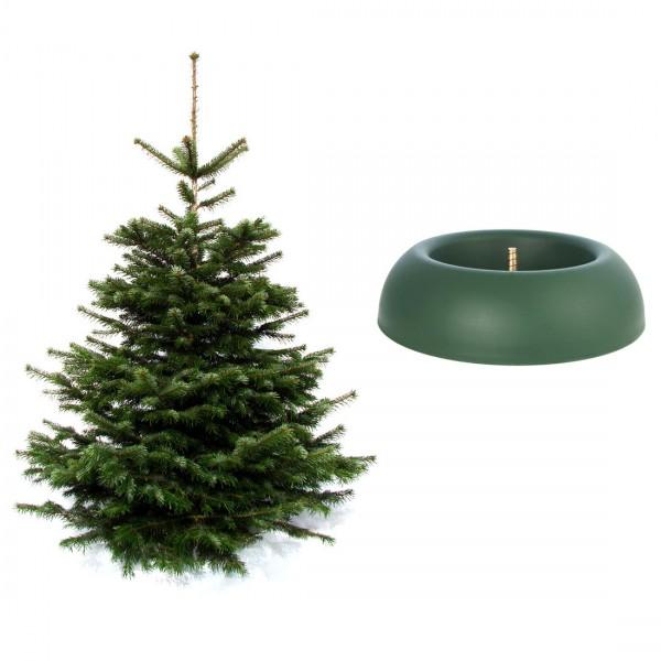Weihnachtsbaum inkl. Easy Fix Junior Baumständer